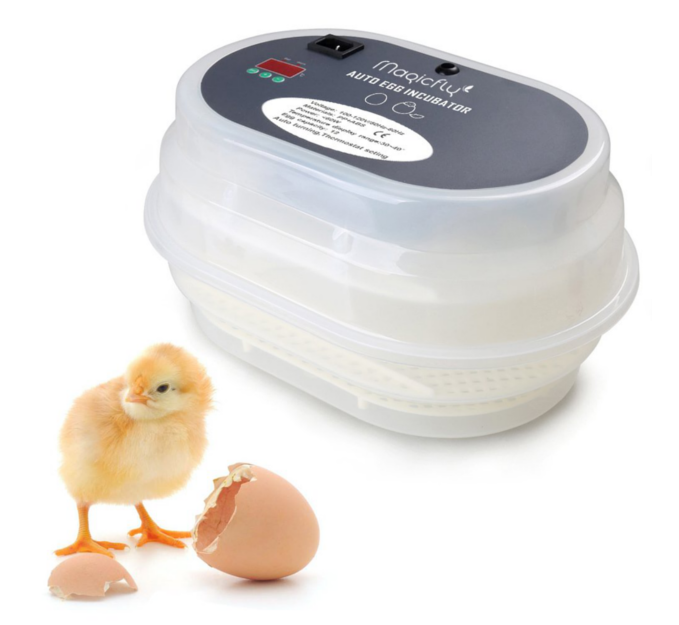 Egg Incubator - This simple and reliable egg incubator is the fun for the family and household that wants to start incubating chickens, ducks and geese.