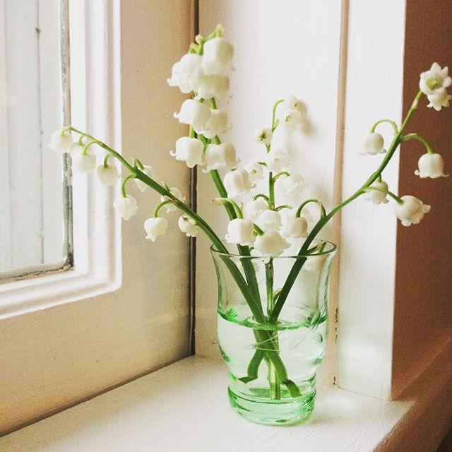 lilies have sprung... #spring #wanderlust #calledtobecreative #floweringbulbs #minibouquet