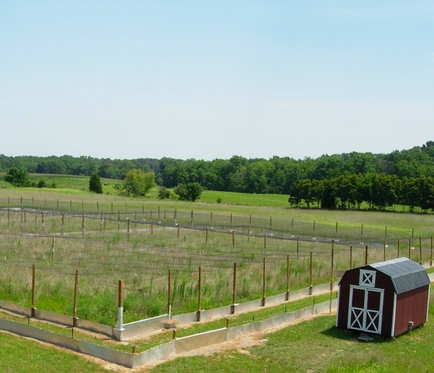Our field enclosures in Illinois