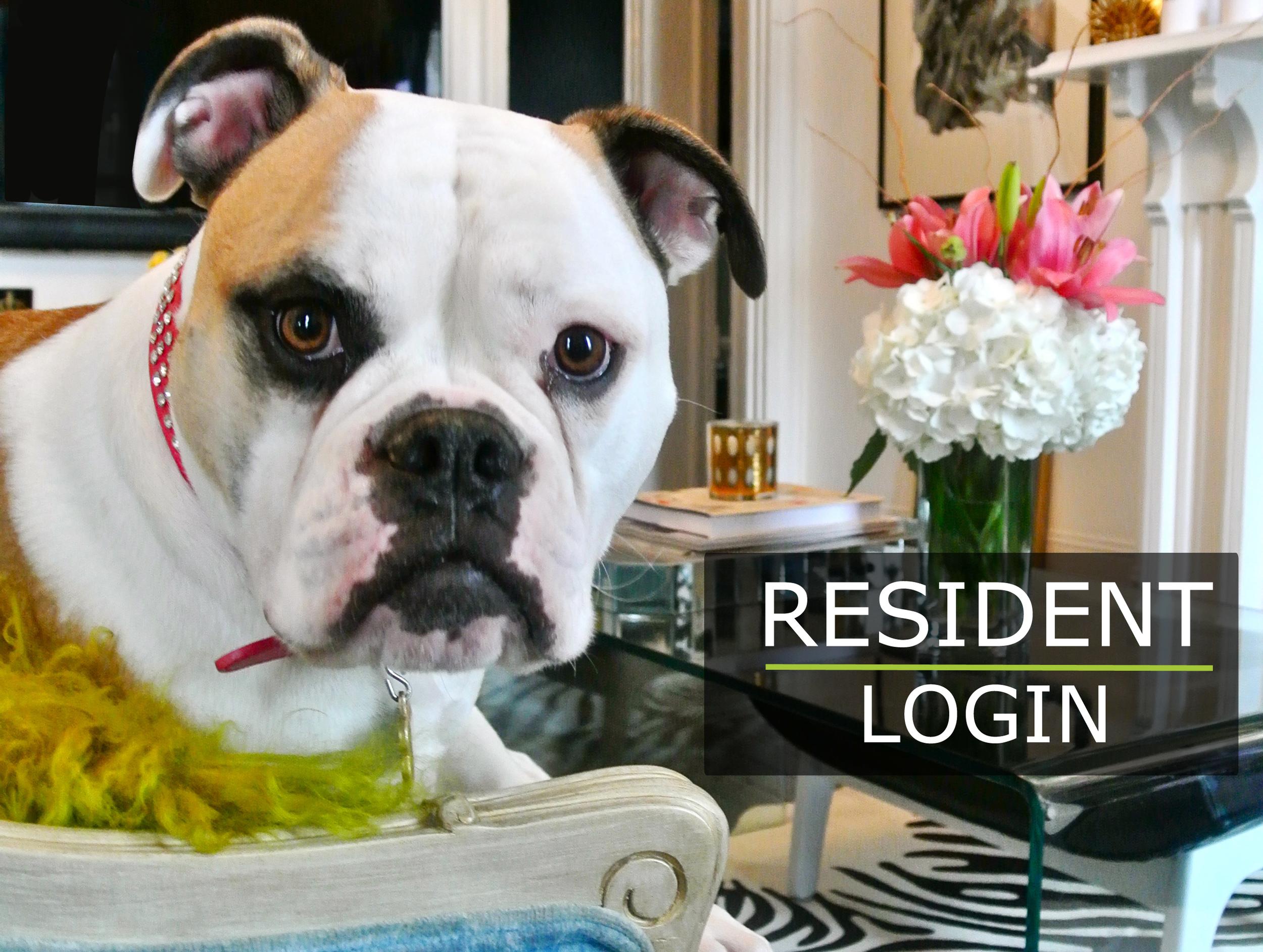 Resident-LogIn-Image.jpg