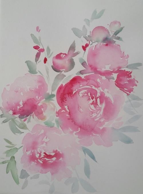 watercolour flowers pink peonies
