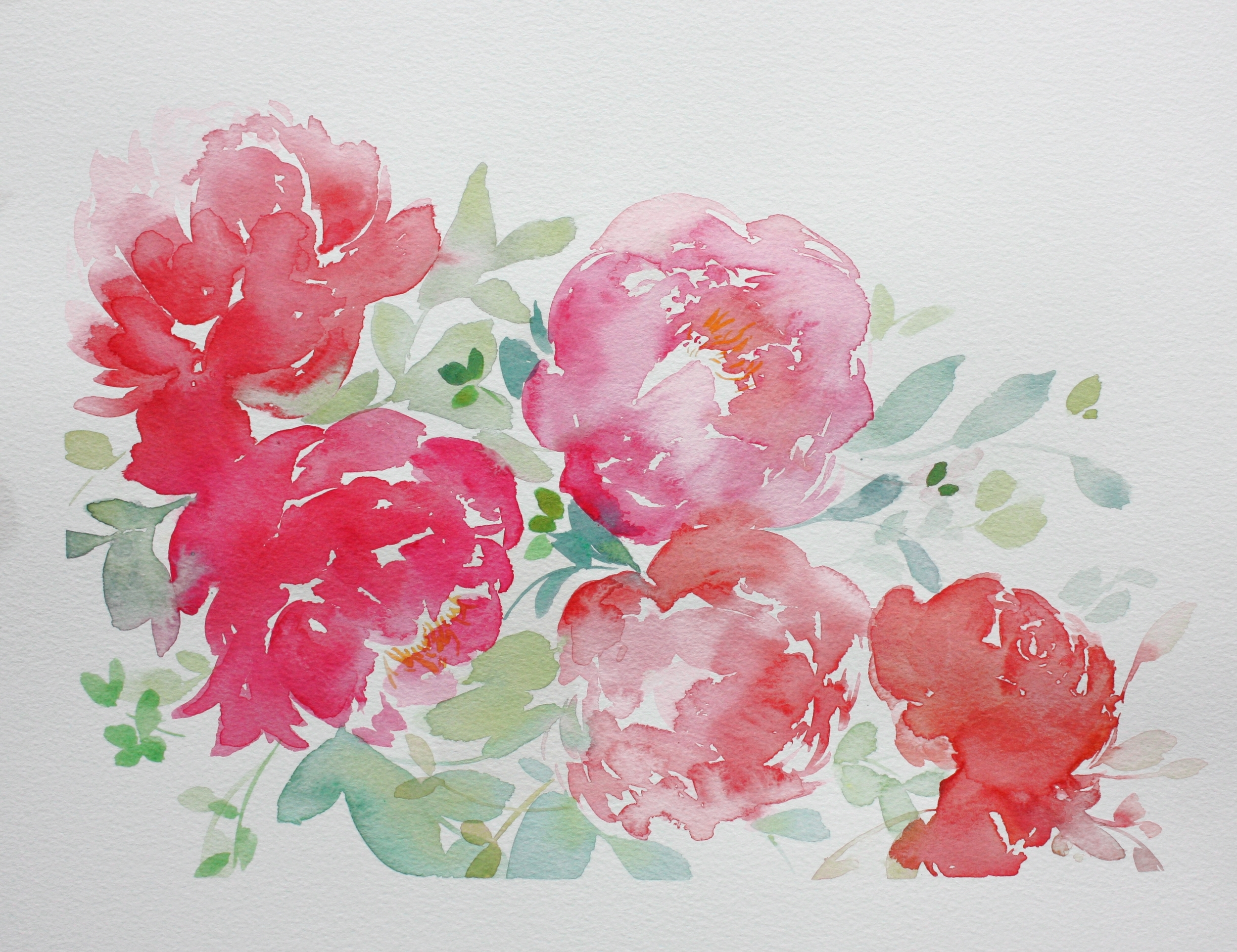 Spring Peonies Watercolour Floral Painting