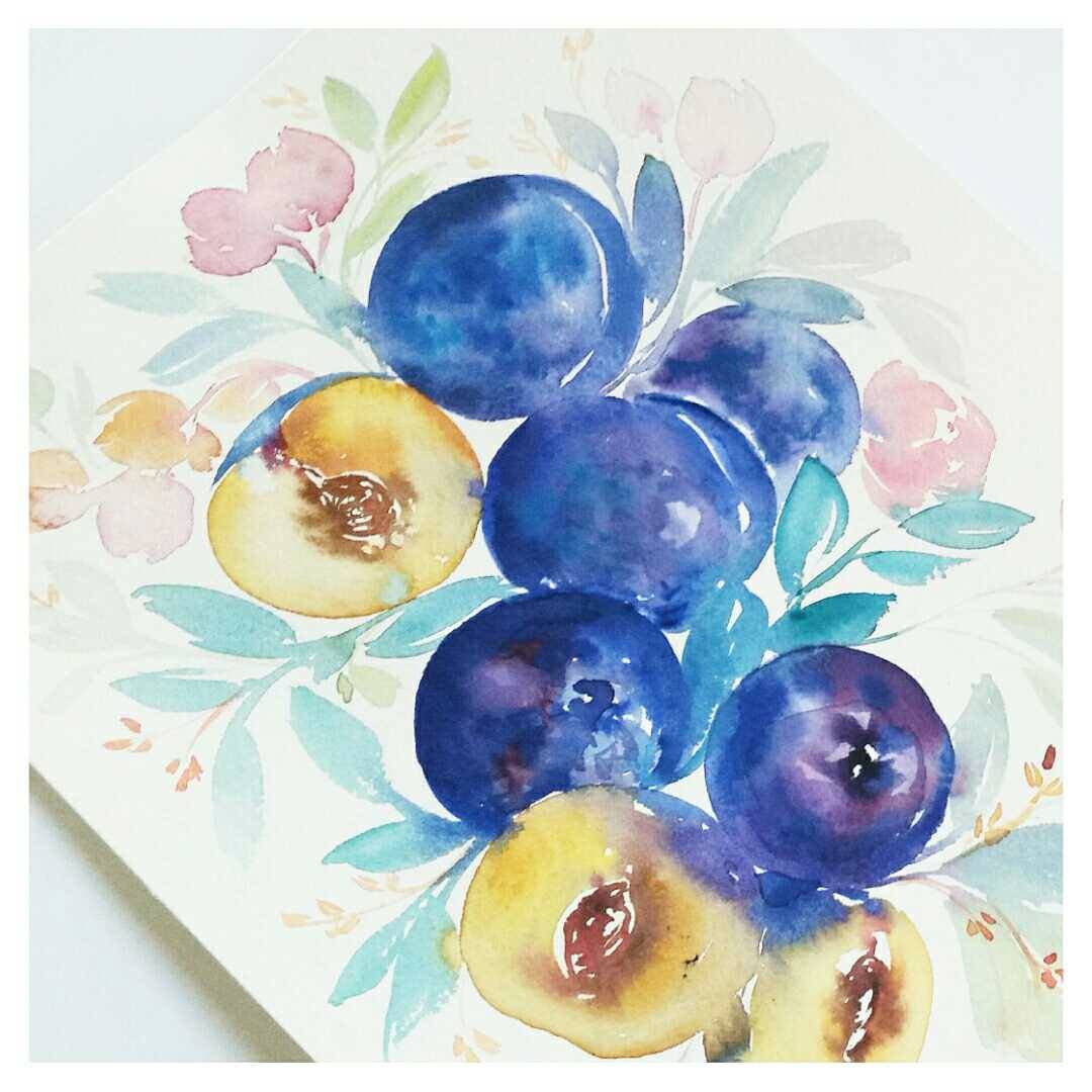 watercolour plums