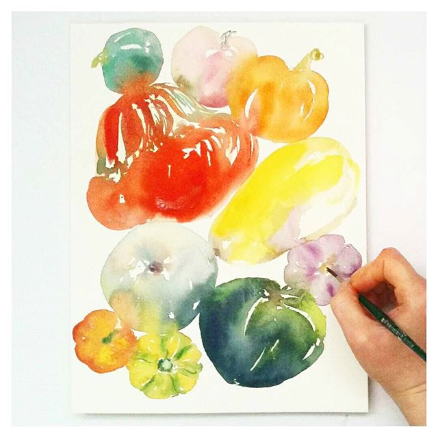 watercolour squash