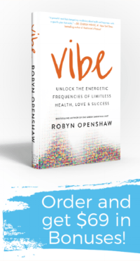 Vibe book cover.png