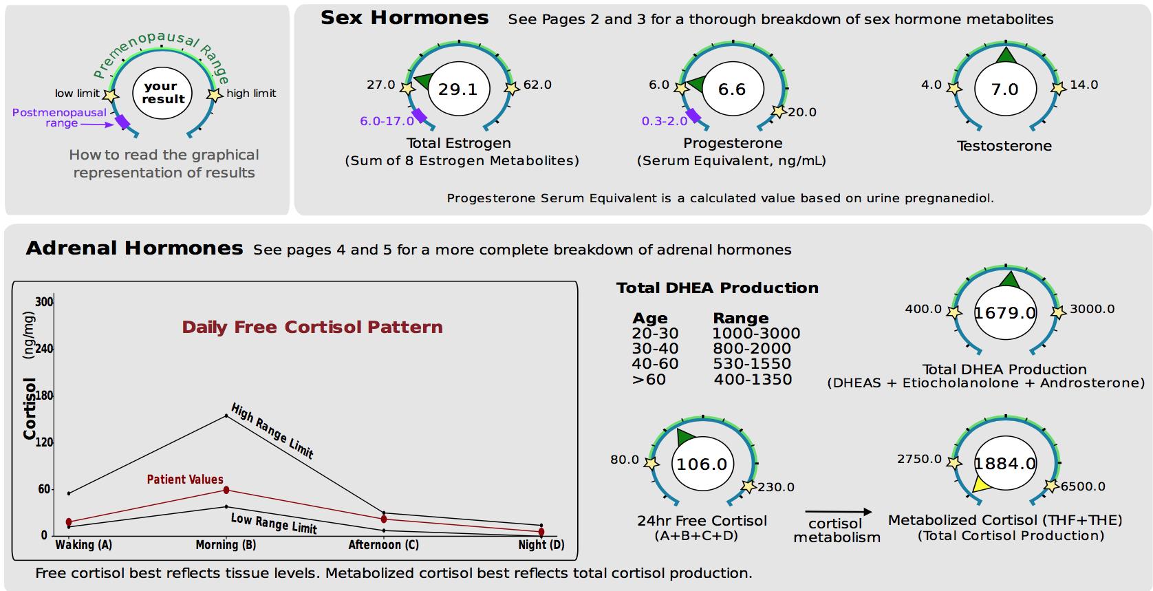 Case stury - EL's hormones.png