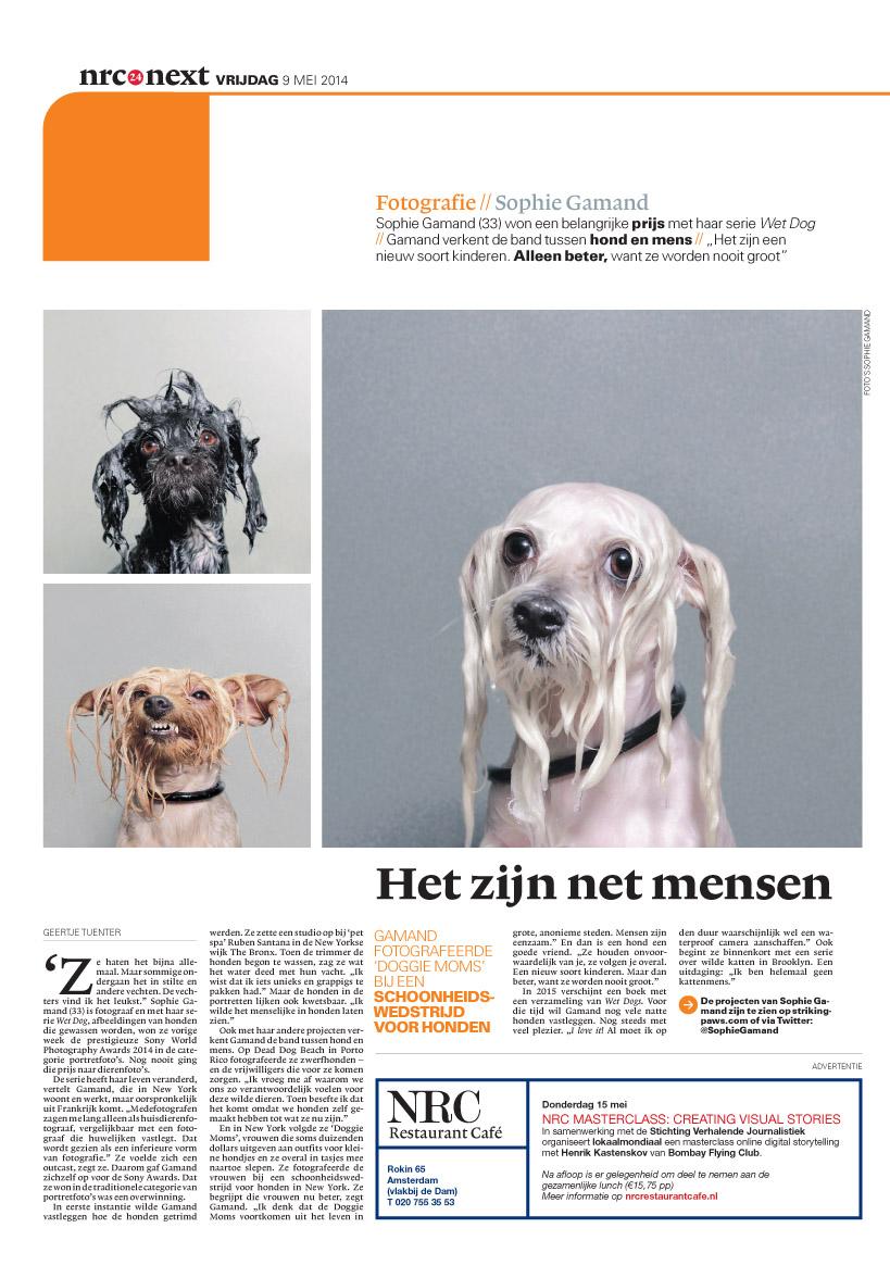 wetdogs-nrc-nextL.jpg