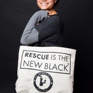 A fabulous, super well made tote sold by our friends at Mr Bones & Co (amazing rescue focusing on pit bulls).  They have shirts and a bunch of other things available in their shop!