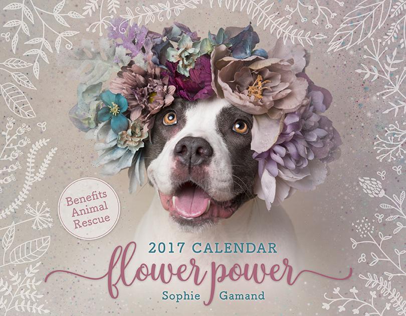 50% OFF - Flower Power 2017 Calendar