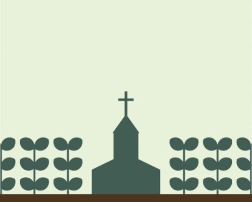 Church plants.jpg