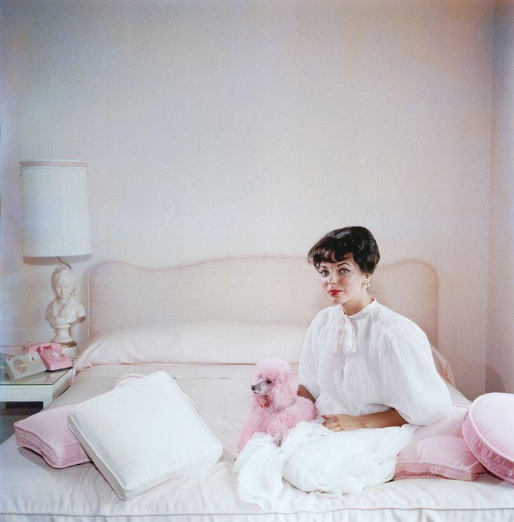 Slim Aarons,  Dame Joan Collins , 1955.