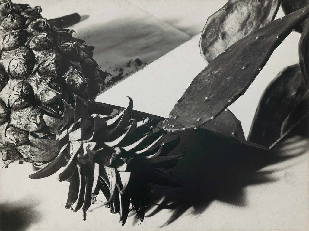 Florence Henri,  Still Life with Pineapple and Cactus,  1931. Photograph, gelatin silver print. Museum of Fine Arts, Boston.