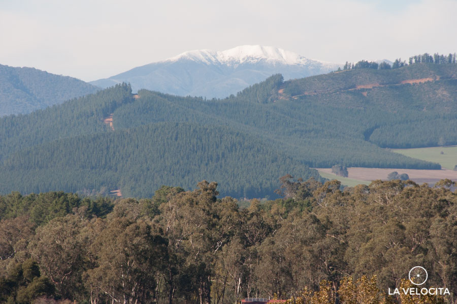 It's official, it still snows in the Victorian High Country.