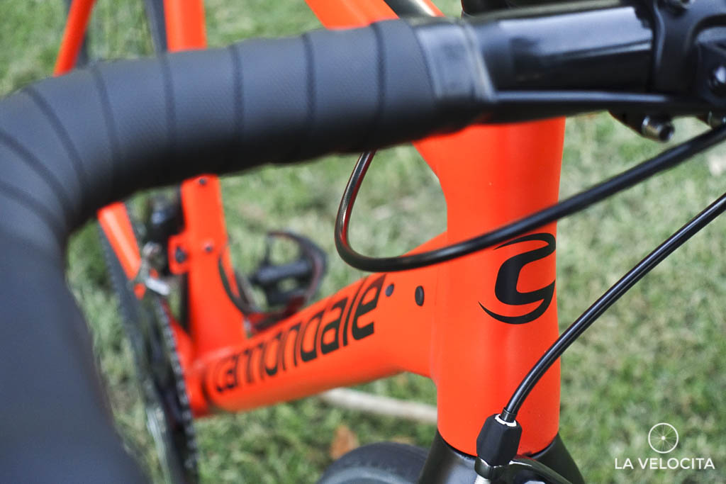 There are visibly entry and exit points for other groupsets
