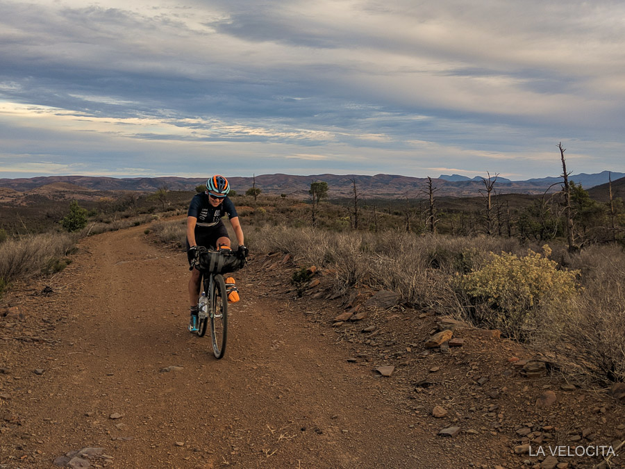 Mawson Trail Trezona Track.jpg