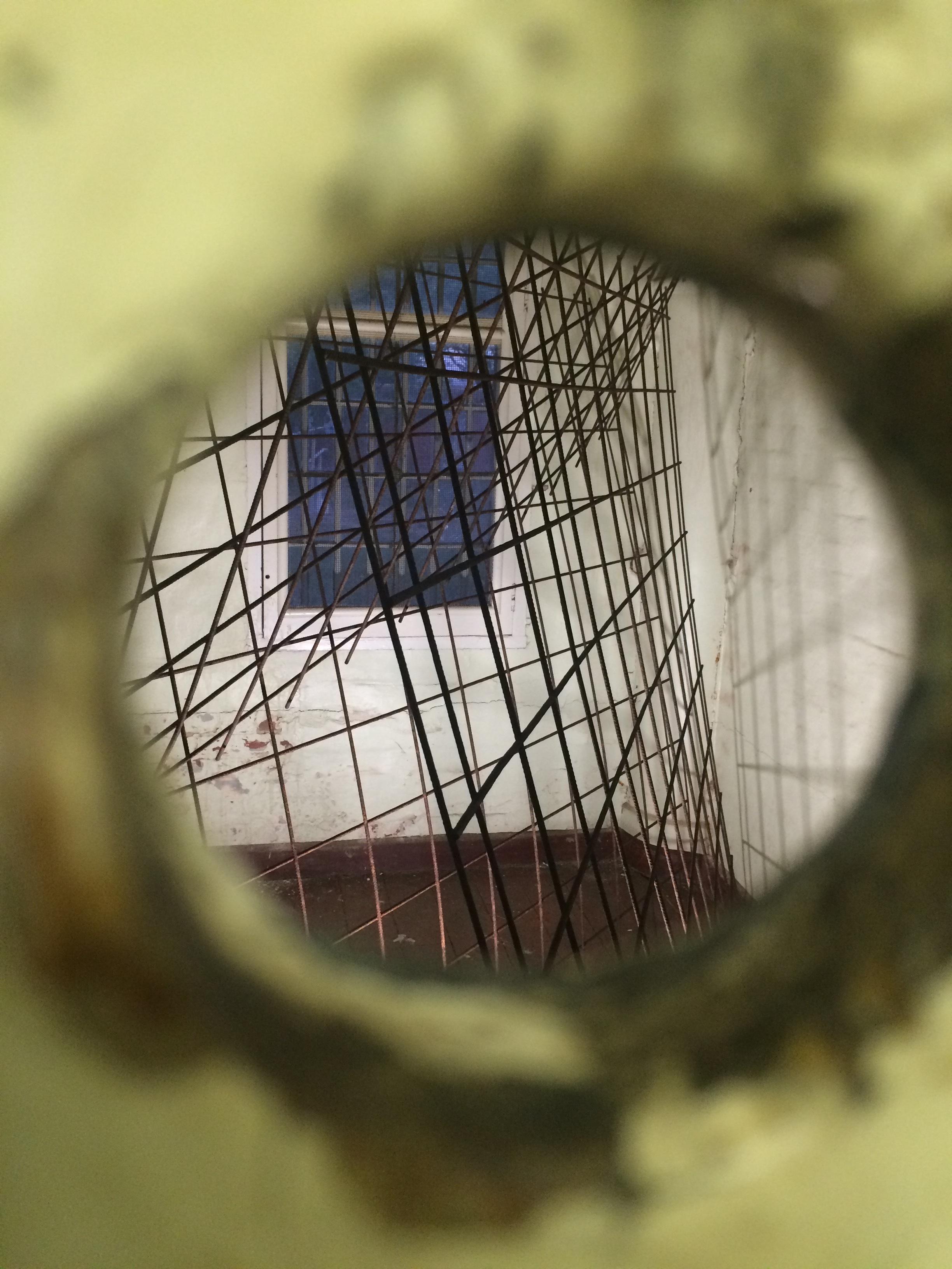 Jane Skeer   Trapped   2015  weldmesh through peephole