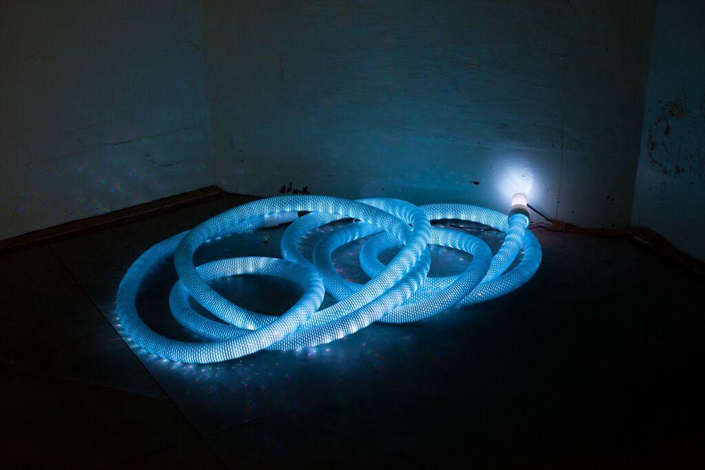 Hose   2015  pool hose, led light strip  Photography Alycia Bennett