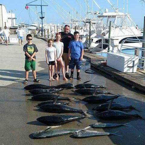 Seawolf sportfishing weather getting right!!!! Bamfluoro.com