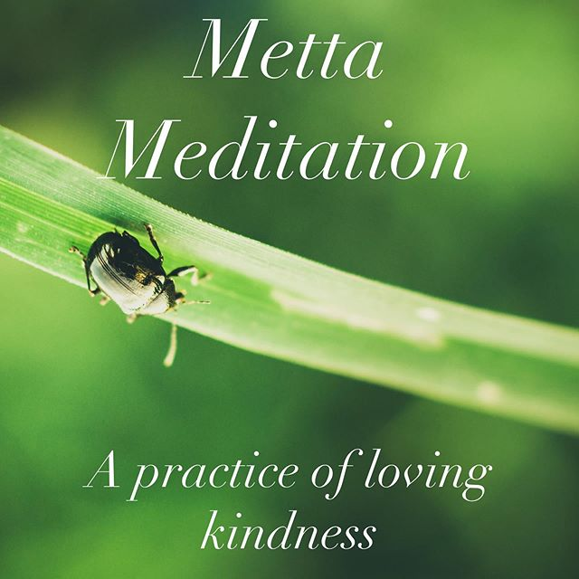 Metta meditation is a practice of sending loving kindness to all beings & it's one of my favorite forms of meditation . Click the link in my profile to access my blogpost - it includes a free 12 minute guided meditation. What other ways could I support your wellness practices?