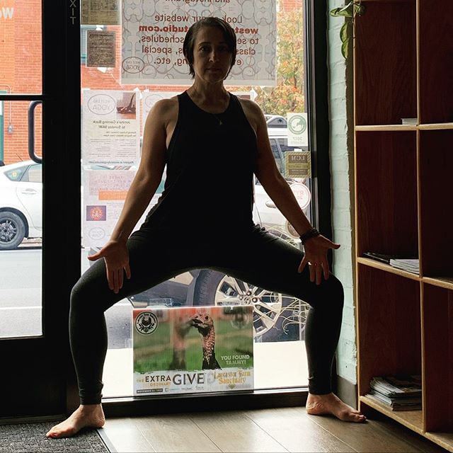 The #extragive is on, and that means you could win a year of free classes @westendyogastudio - just find the 4 different lawn signs around the studio, take a selfie, post on Facebook or instagram & complete the entry form on the @lancasterfarmsanctuary website. #freeyoga #lancasterpa #lancasteryoga