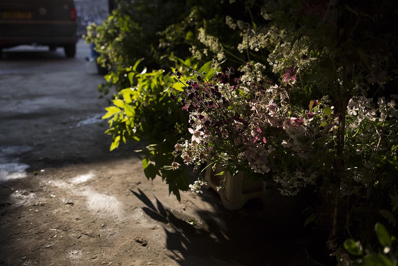 Aesme Flowers London   Wedding Flowers