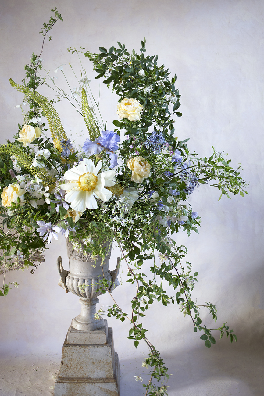 Dog rose, Clare de Lune peonies, bearded iris, garden roses, Eremerus, sweetpeas and clematis - a collaborative urn composition created with Samantha of  Mayura Flowers