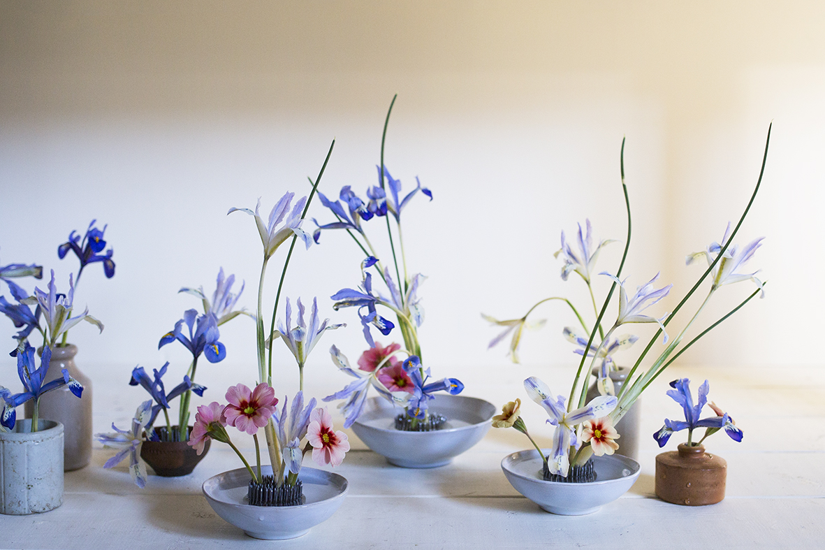 Iris reticulata in flower arrangements | Aesme Studio London