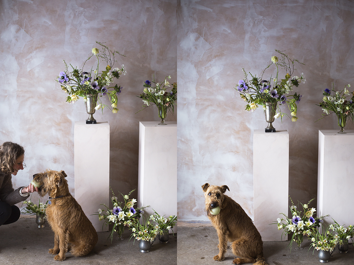 Anemone and ranunculus flower arrangements | Aesme Flower Studio London