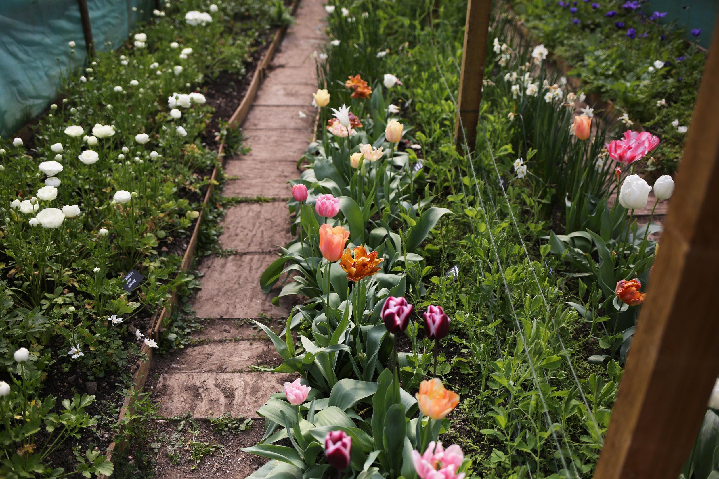 Spring flowers   Aesme Flower Studio London