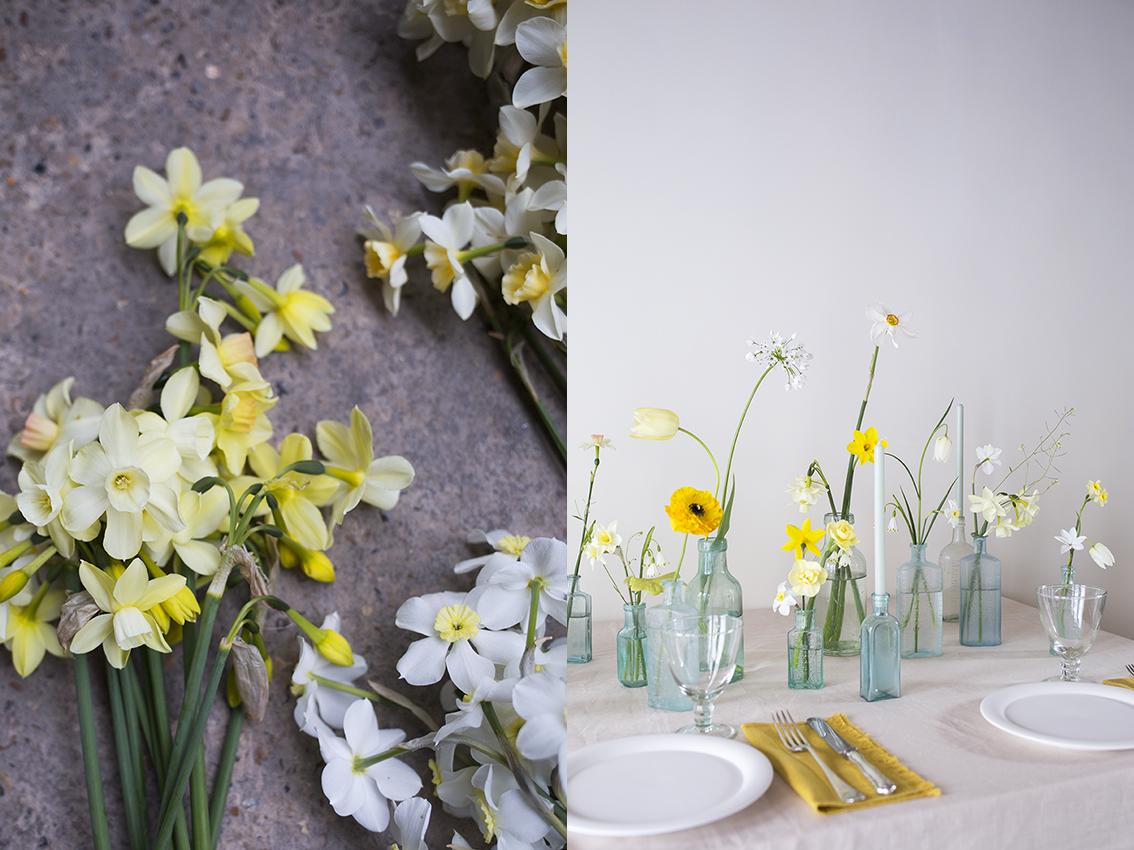 Flower Studio   Left: Narcissus 'Moonlight Sensation' & 'Segovia'