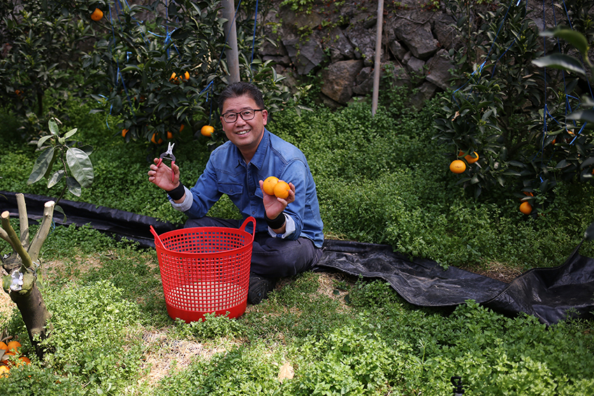 Flower School | a friendly mandarin farmer who gave us permission to roam his greenhouses and gorge on the sweet ripe fruit as we picked