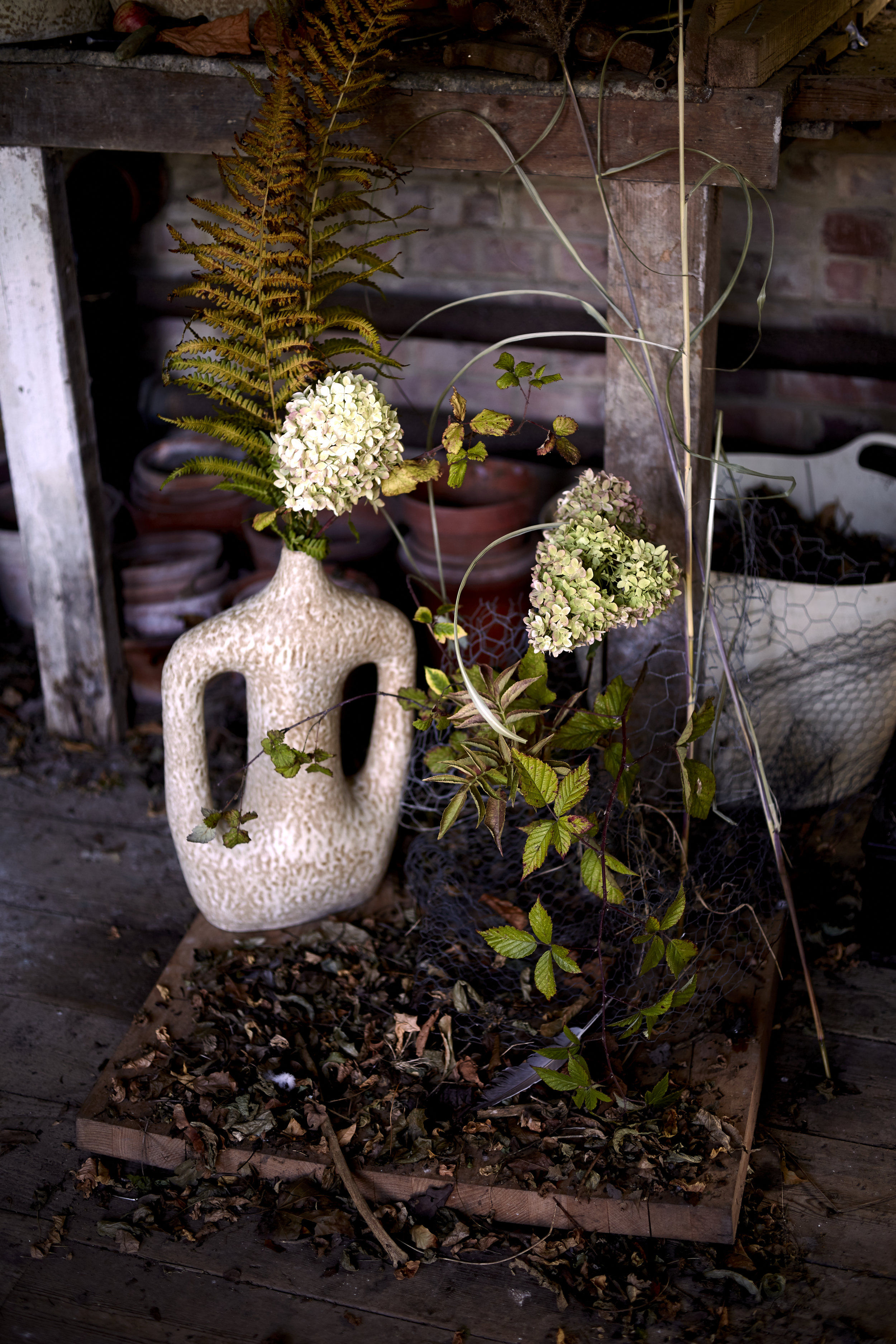 Aesme Flowers | Kristin Perers
