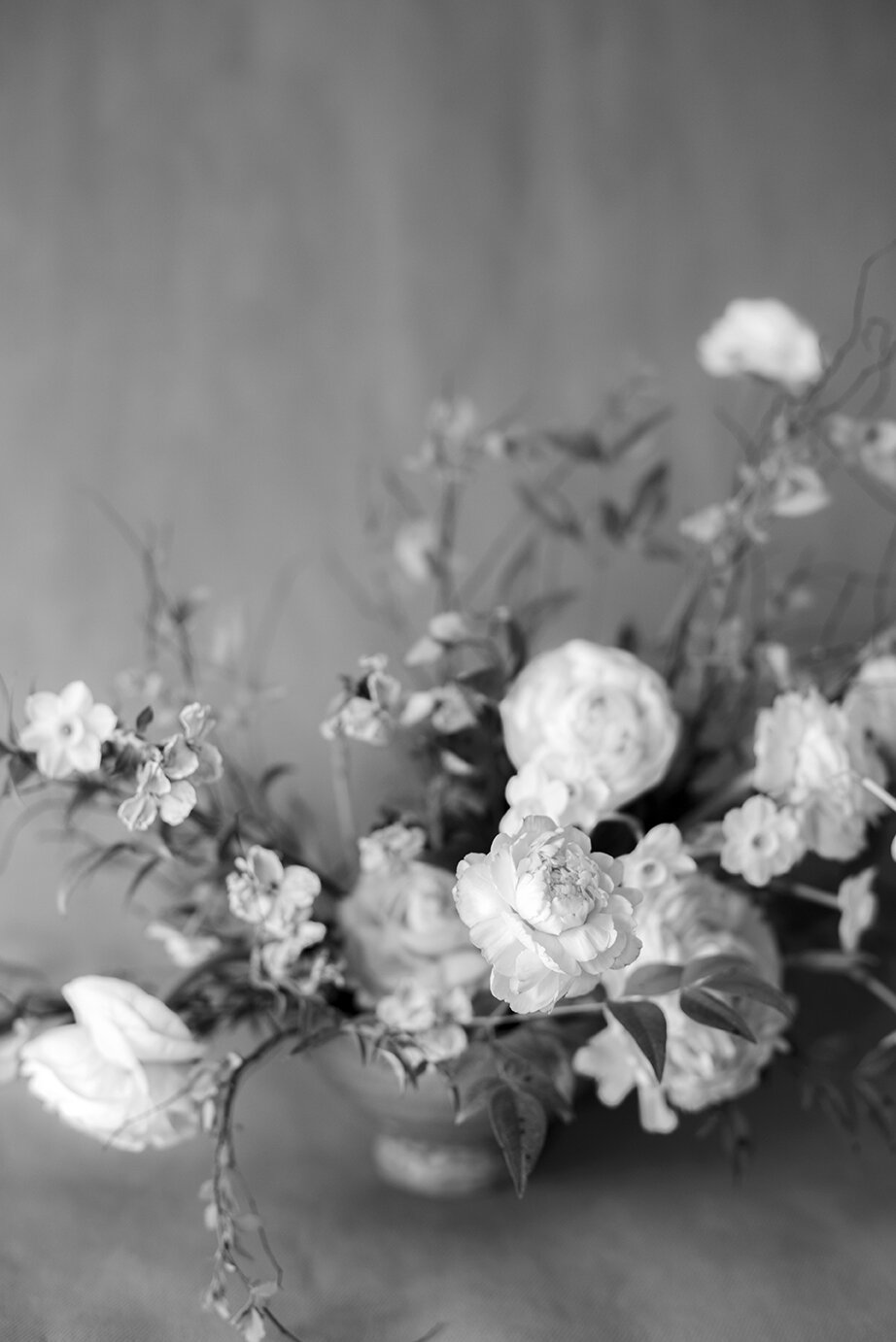 Fine Art Photography Nature Flower Photography Monochrome Ethereal Blossom Zen 31 Home Decor Dahlia Wall Art Black and White Photography The Dahlia Project Garden