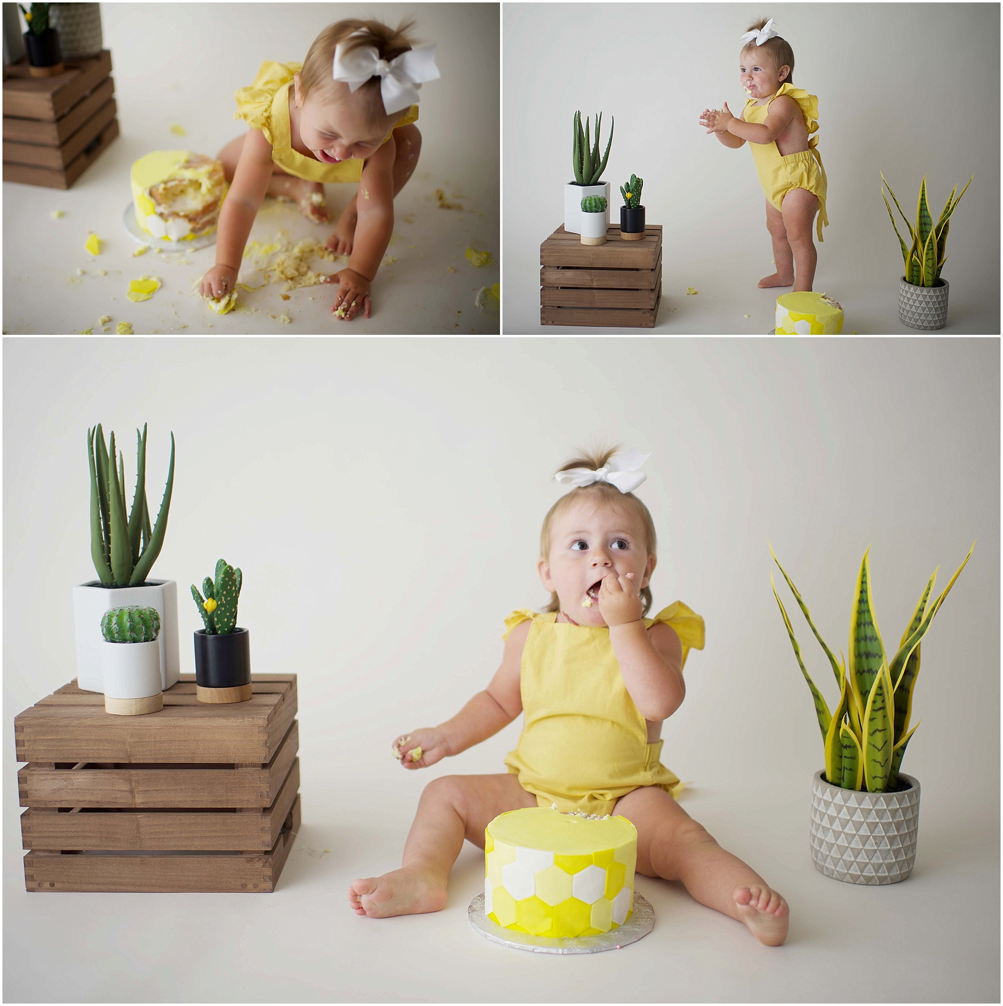 www.alielizabethphotography.com