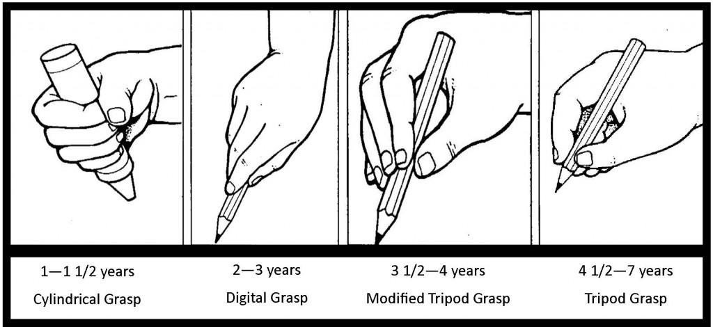 pencil-grasps-1024x470.jpg