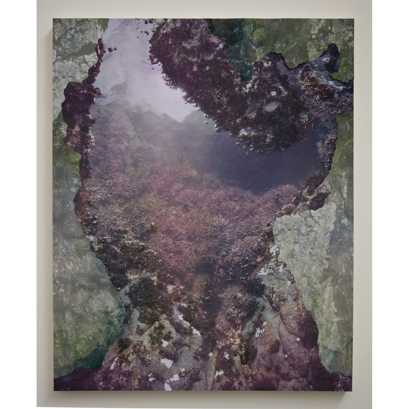 "Tidal Pool III,   archival pigment prints, collage on panel, 54"" x 43"", 2012."