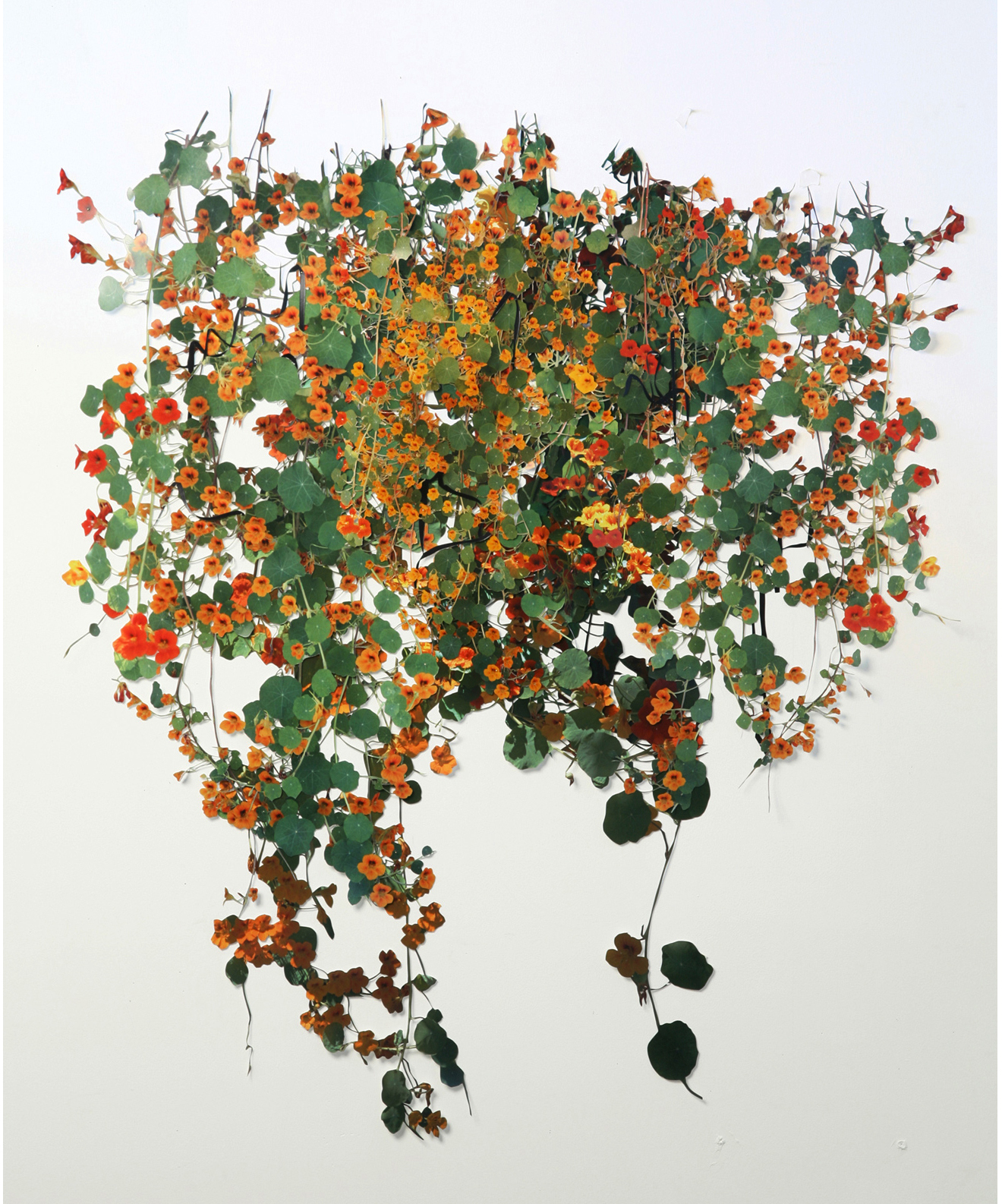 """For You Bouquets and Ribbon'd Wreaths,   hand-cut c-prints, collage, 50"""" x 40"""", 2008."""