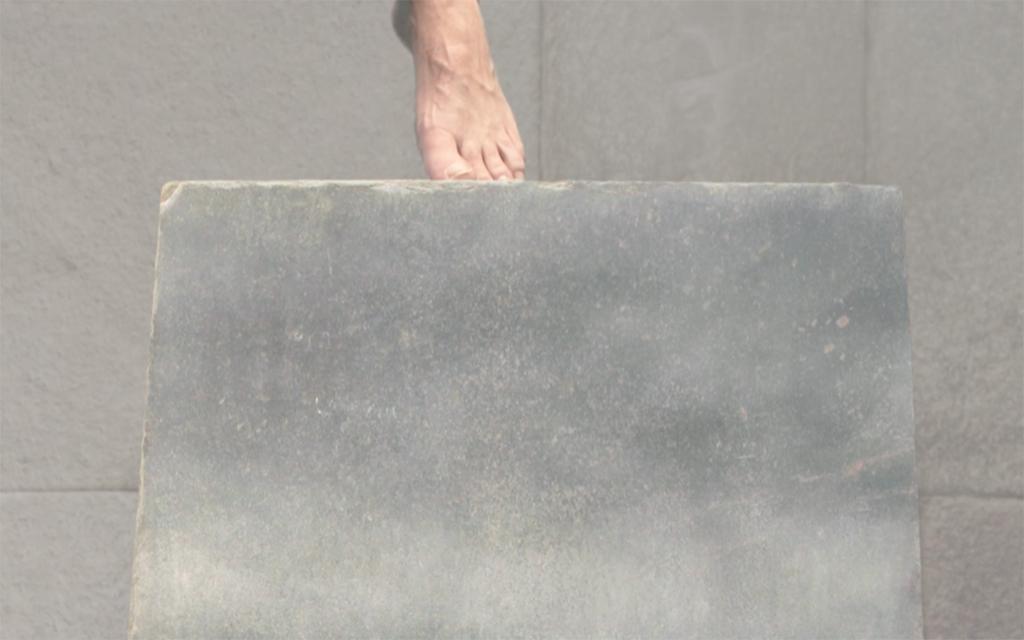 SUSPENSION_ pale foot_pp.jpg