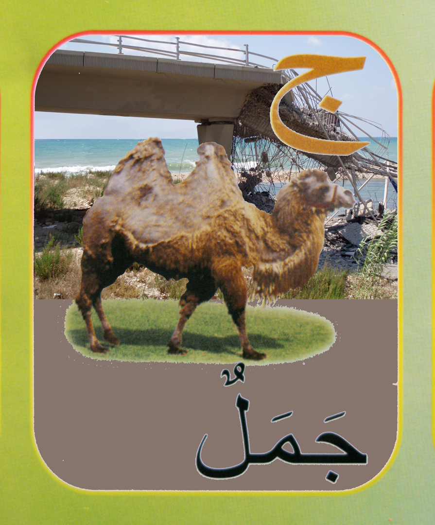5. camel flat.jpg