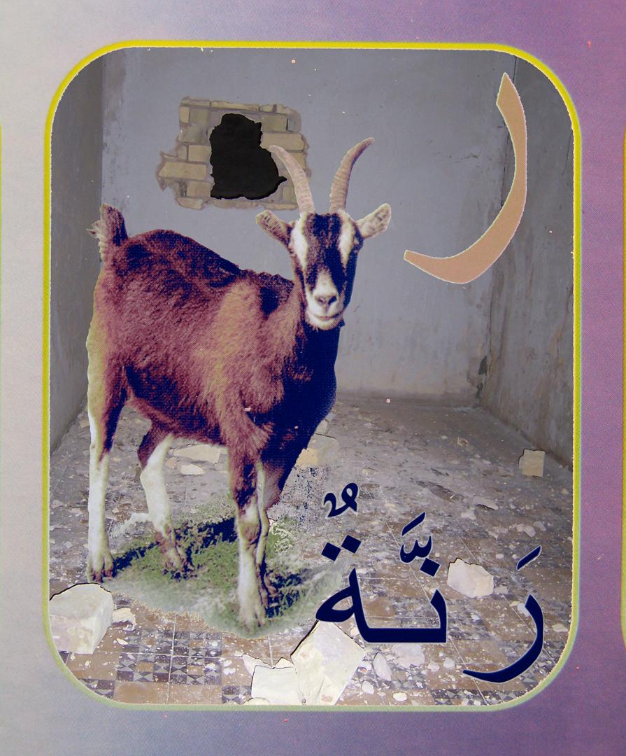 10. goat flat.jpg