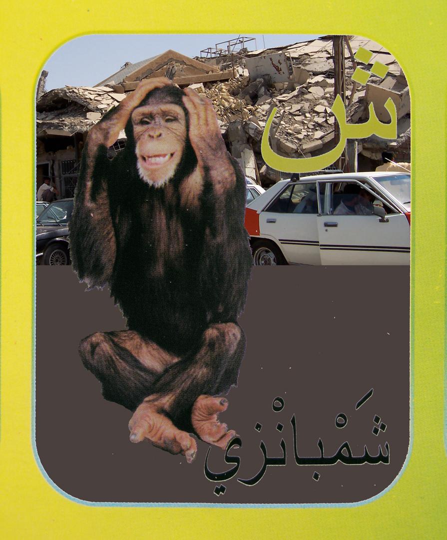 13. chimp flat.jpg