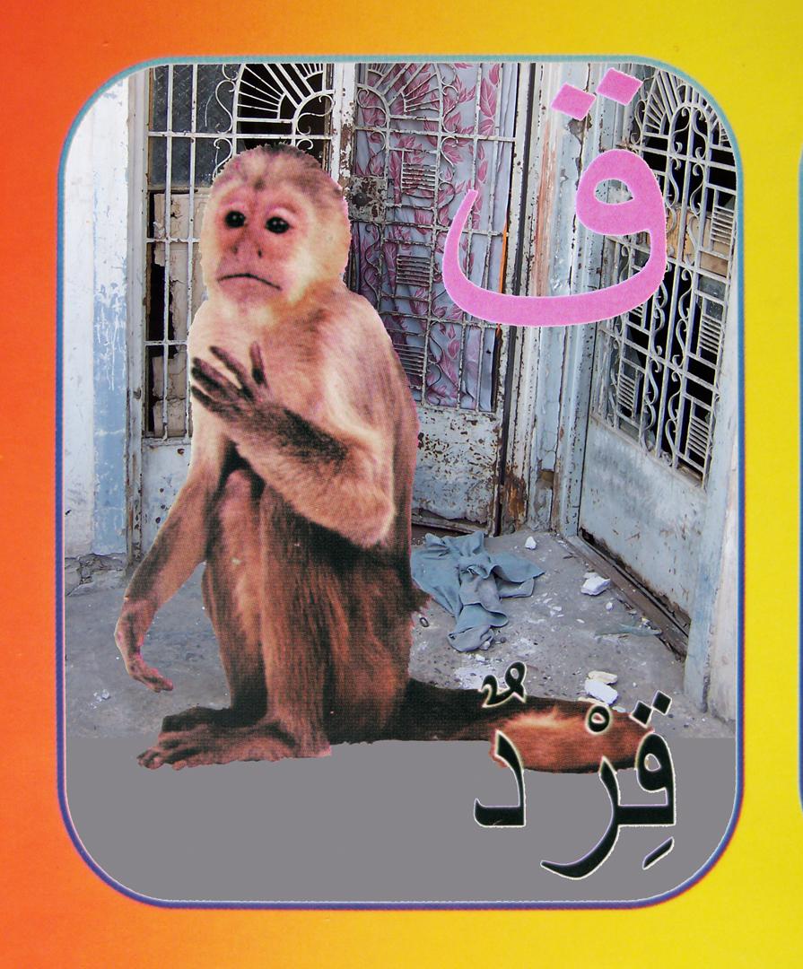 21. monkey flat.jpg