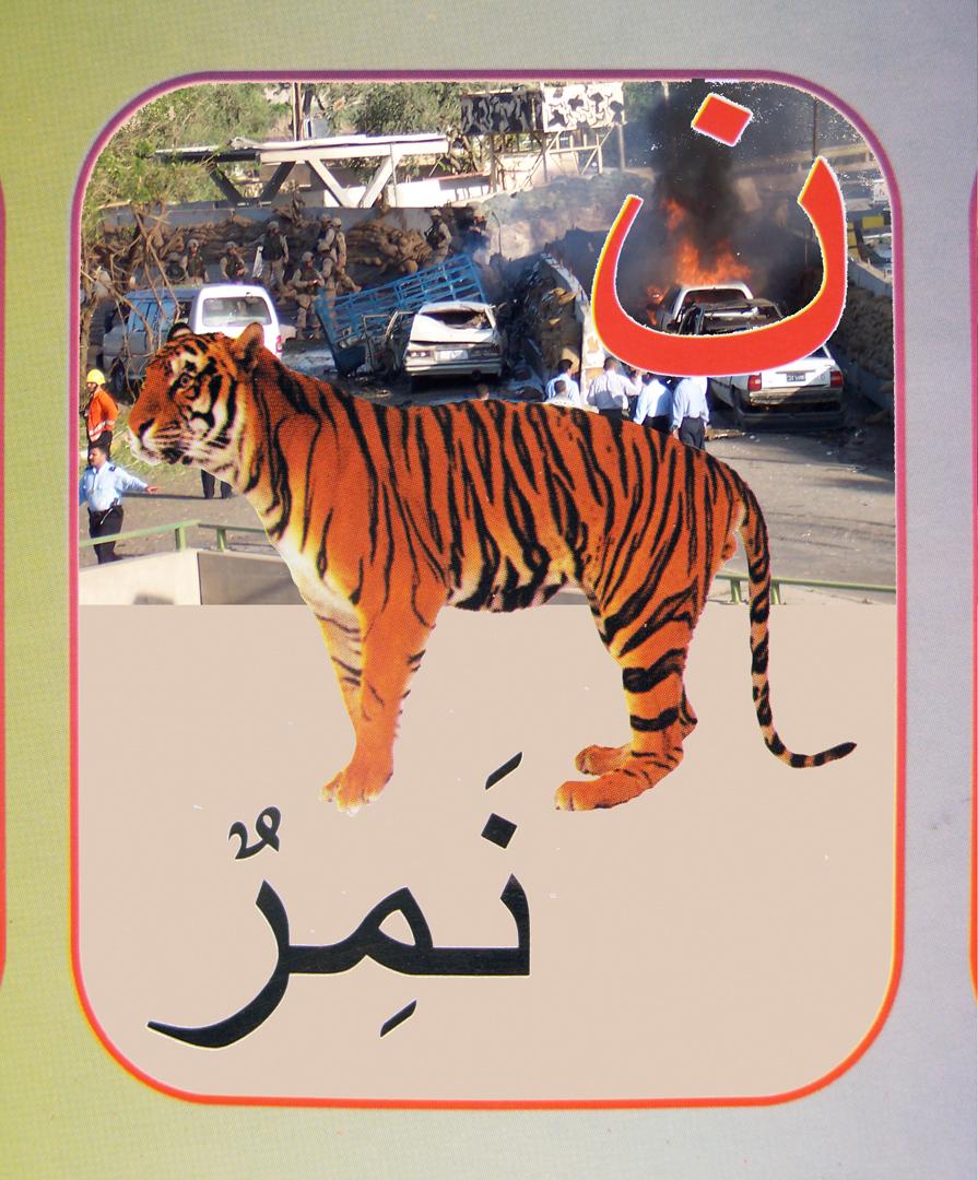 25. tiger flat.jpg