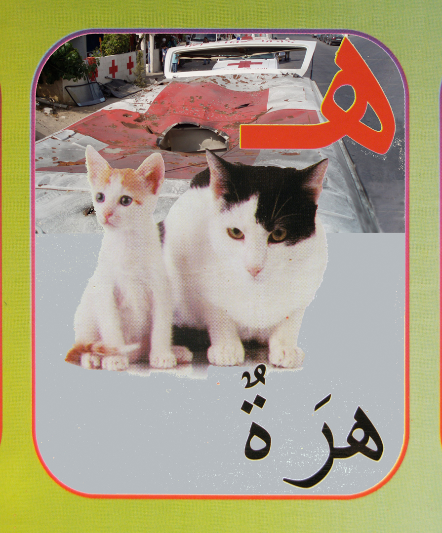 26. cat flat.jpg