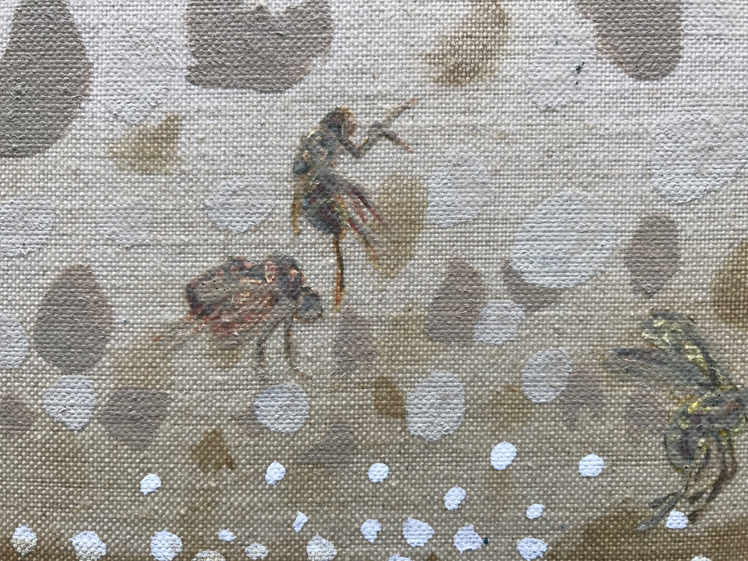 THE CLOSED MOUTH, 1997, detail of mosquitoes