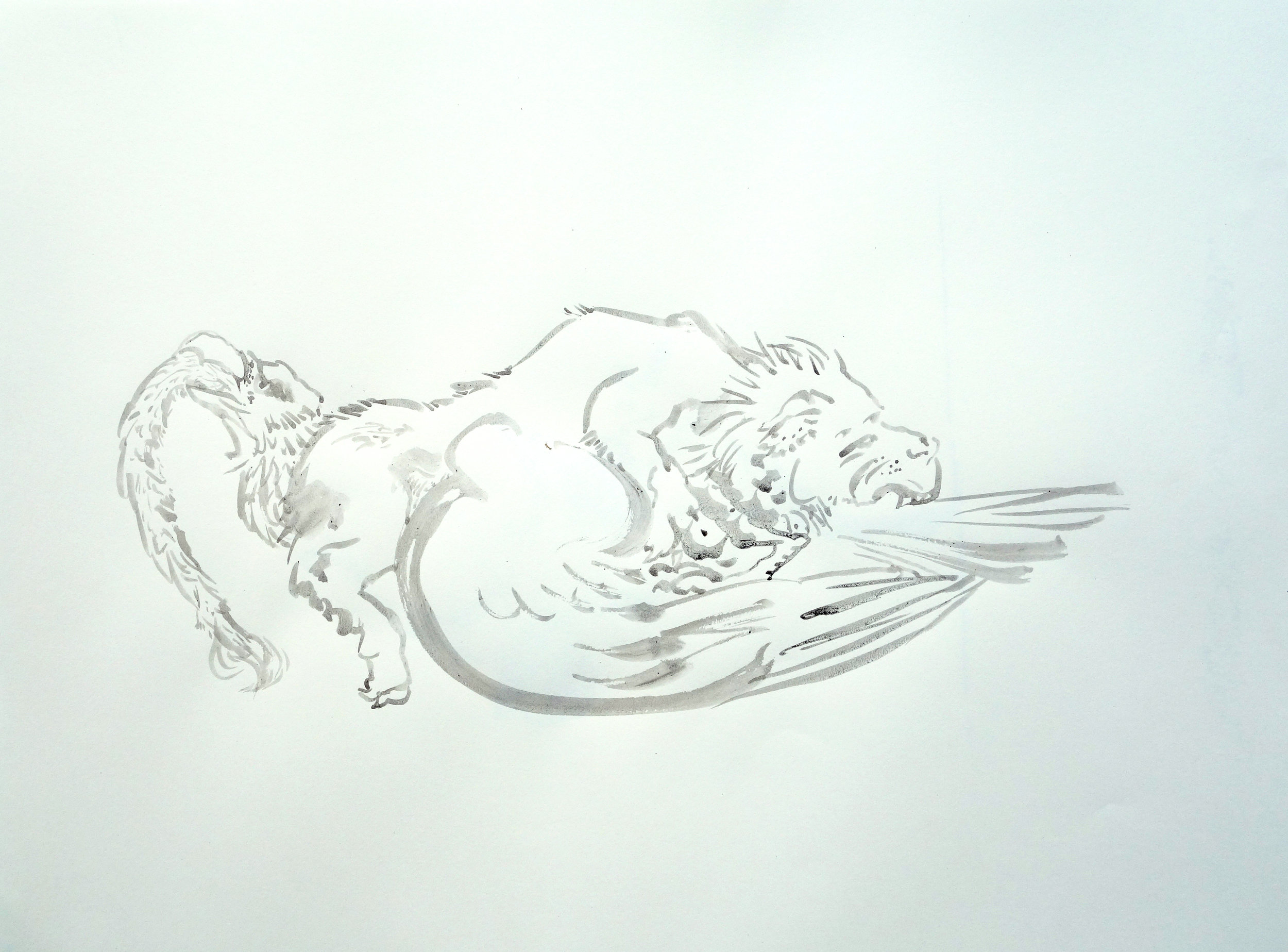 LION EATING WING