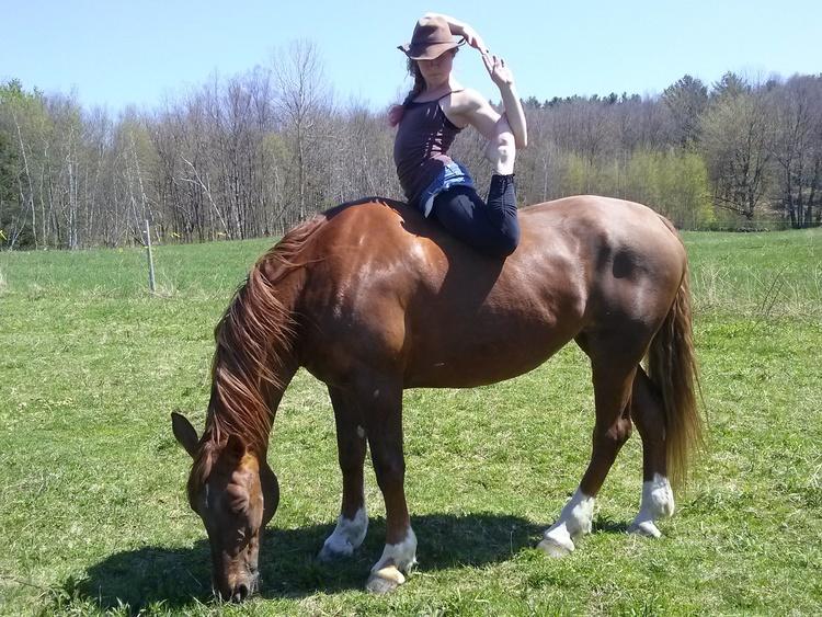 Horses 4.jpg