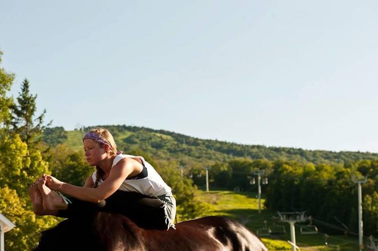 Horses 8.jpg