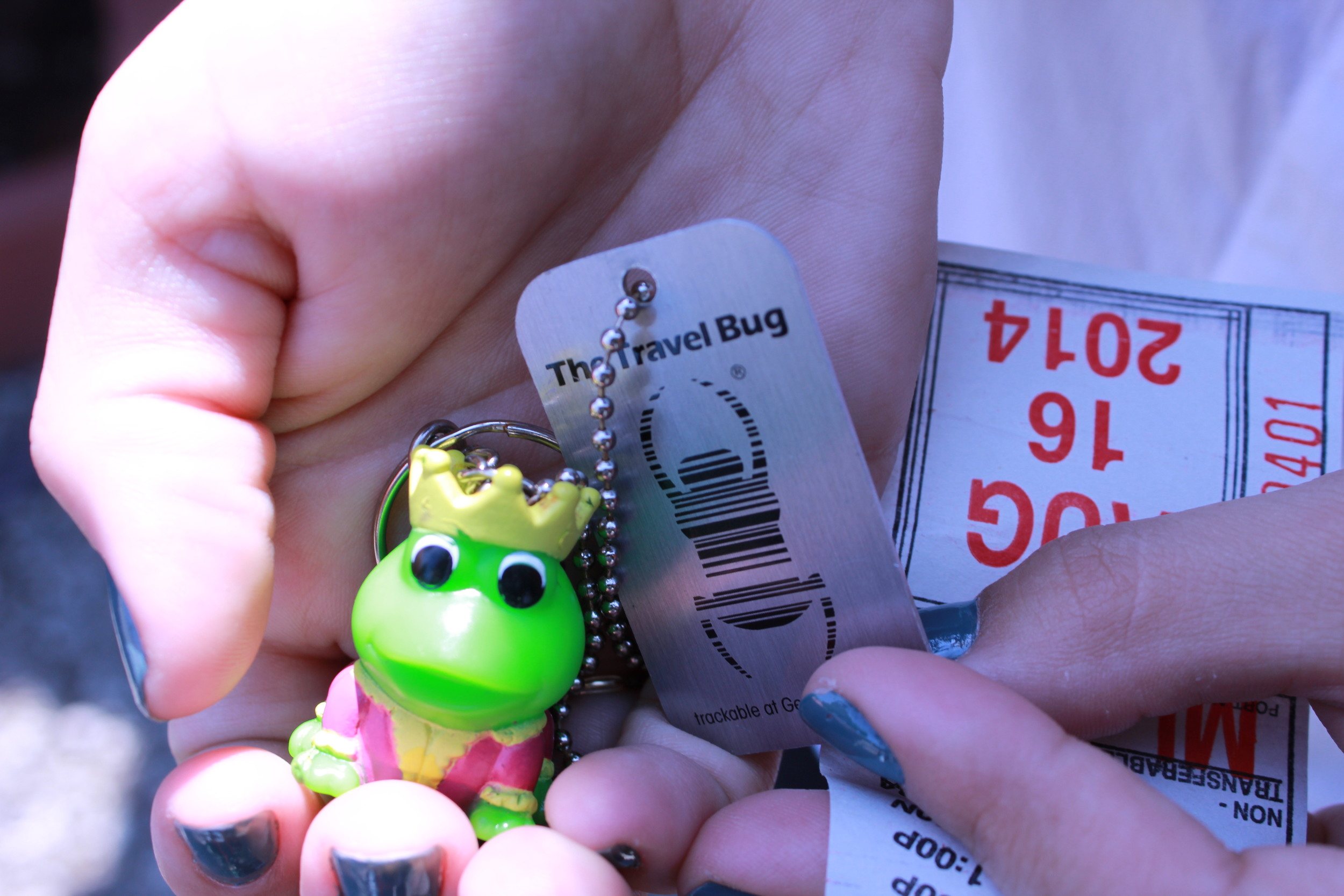 A Travel Bug of Geocaching