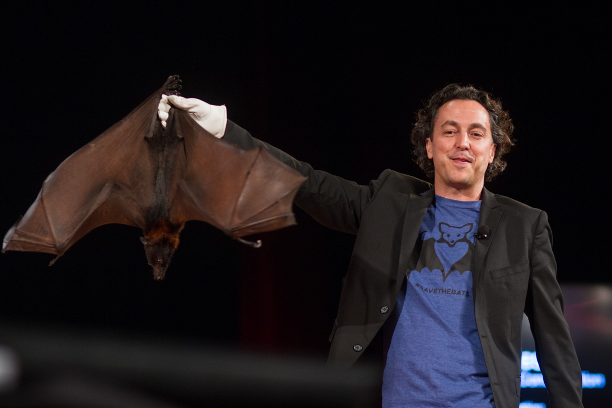#SaveTheBats founder and advocate Rob Mies showing off one of his friends at TEDxDetroit.